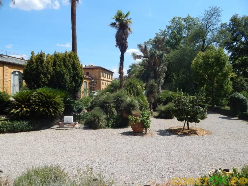 Ботанический сад во Флоренции