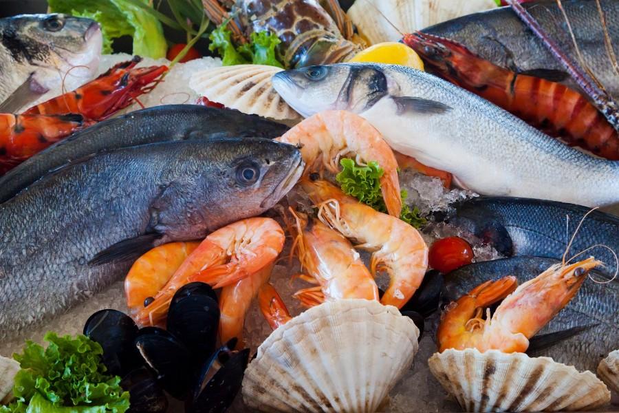 Как выбрать рыбу правильно